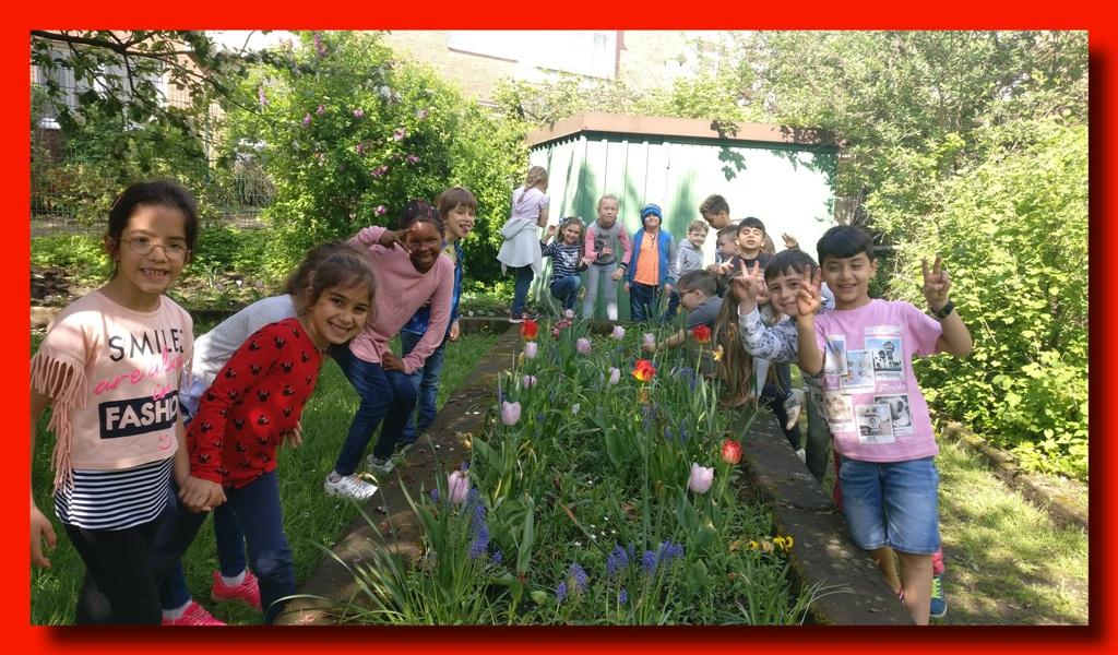 Unser blühender Schulgarten